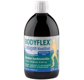 Bodyflex Collagen Nivel Shot 500 ml (Hankintatukku)